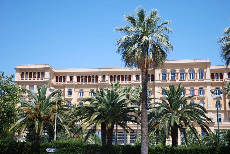 Školski kampus u hladu palmi