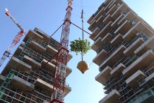 Milanski zeleni oblakoderi, Bosco Verticale Towers